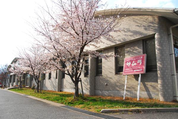 http://www.furoukai.jp/cms/gallery/images/2011%E5%B9%B44%E6%9C%8811%E6%97%A5%E3%81%95%E3%81%8F%E3%82%8904.jpg