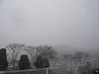 雪 2号線側_R.JPG