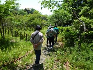 菖蒲園への道2