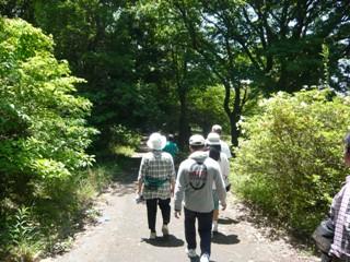 菖蒲園への道1