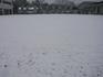 雪積もった しばふ_R.JPG
