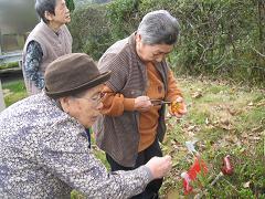 IMG_3801 干し柿.JPG